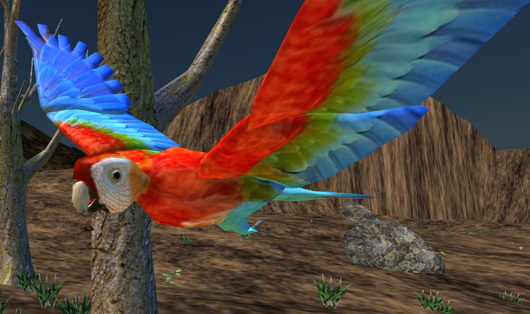 Aon the guacamaya macaw